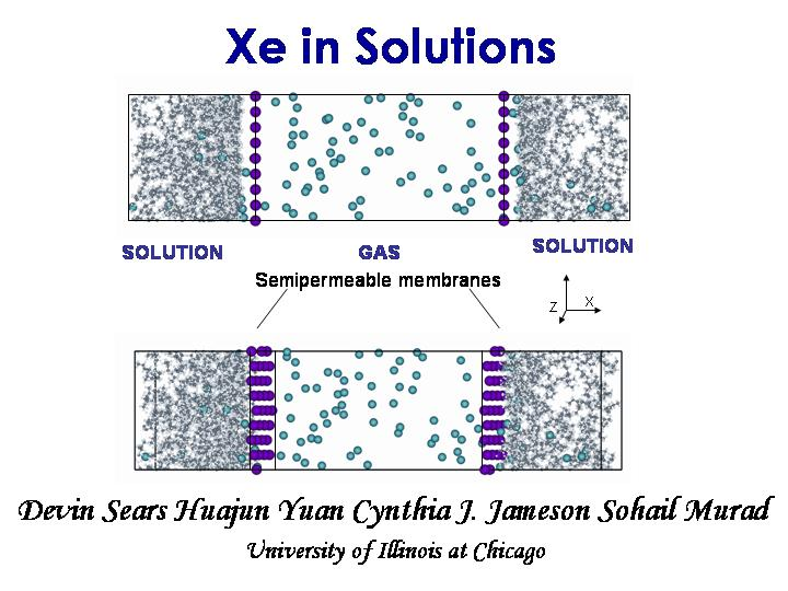 Xe in solutions