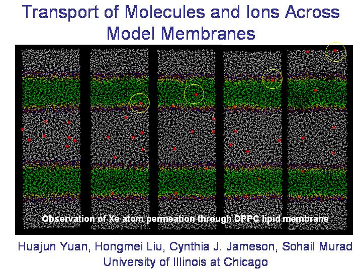 Transport of molecules&ions across membranes