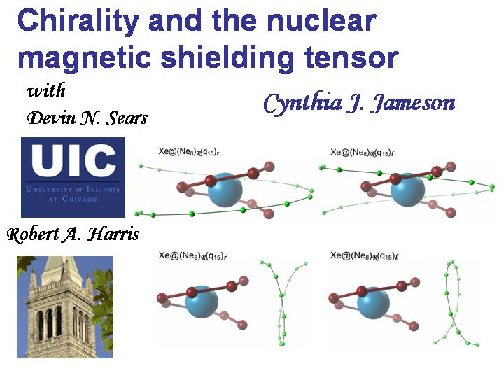 Chirality and the nuclear magnetic shielding tensor