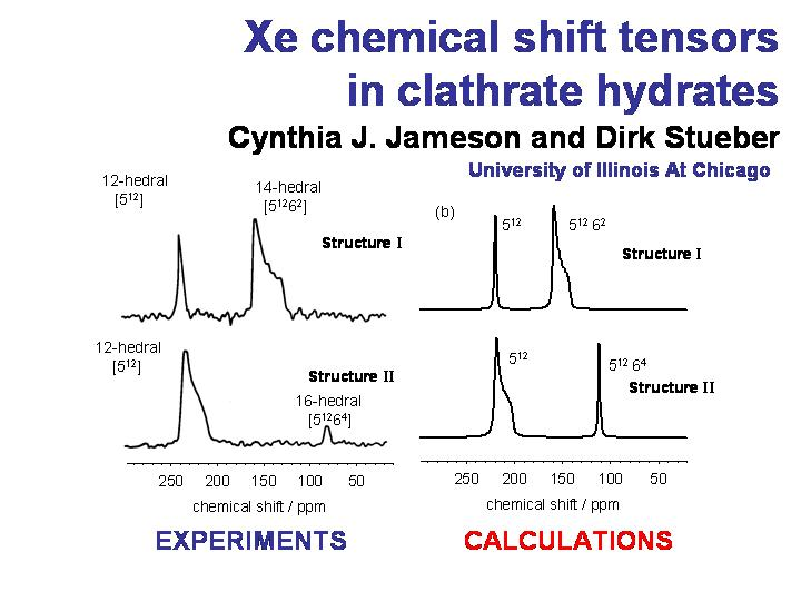 Xe chemical shift tensors in clathrate hydrates