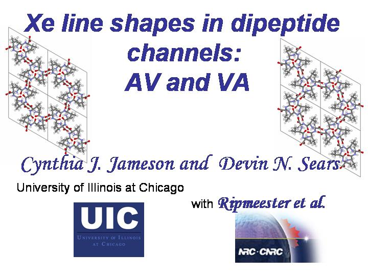 Xe lineshapes in dipeptide channels